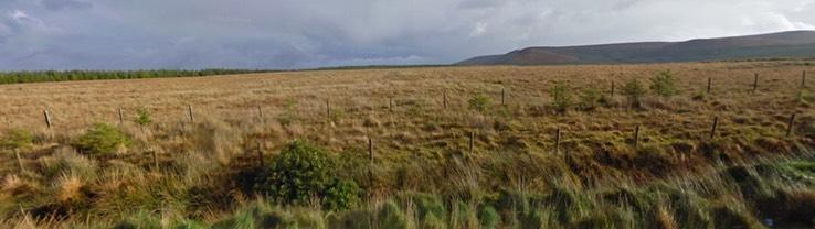 Ma62 Glenturk More Bog Nha Foss Environmental Consulting Peter Foss